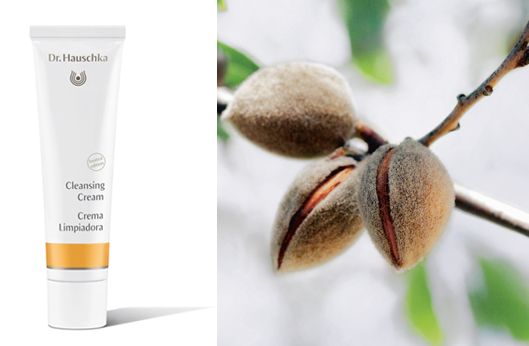 Enjoy a Free Cleansing Cream (1 fl oz) with All Orders $125 & Up.