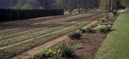 Der WALA Garten