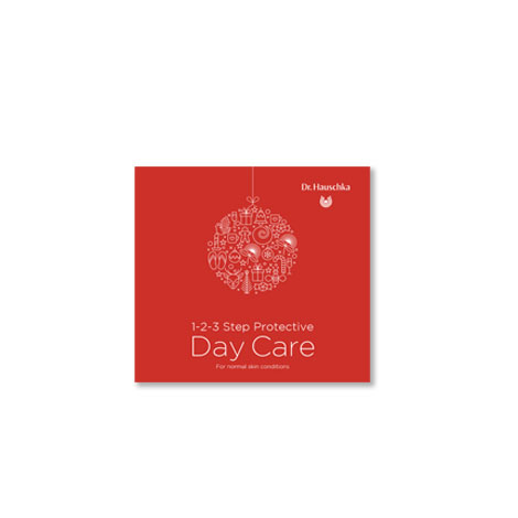 Christmas 1-2-3 Step Protective Day Care
