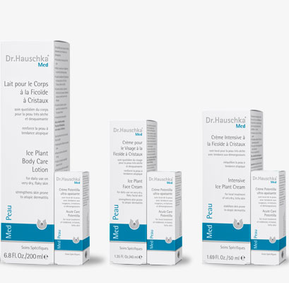 Systematic medical skin care – for a noticeably enhanced quality of life for people with very dry skin and atopic dermatitis  Dr.Hauschka Med skin care now with a free trial size Acute Care Potentilla
